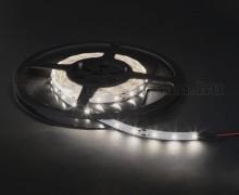 LED szalag, hidegfehér, 5 m 41006C